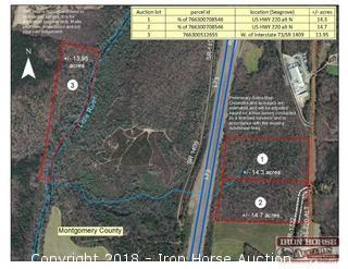 14.3 +/- Acres Fronting Alternate Hwy. 220 Business and I-73 / Hwy. 220, Just south of Black Ankle Road interchange