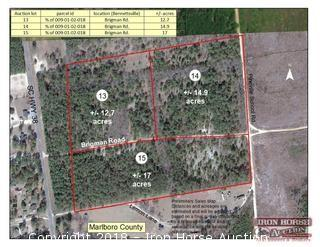 14.9+/- Acres on Brigman Road (Just off Highway 38) in Bennettsville , SC
