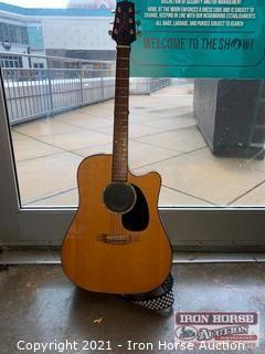 Takamine Guitar