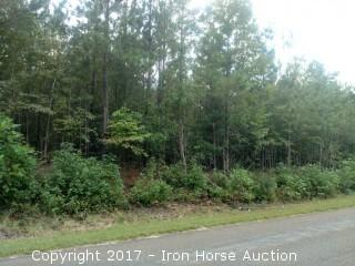 5.95+/- Acres on Leach Road in Candor, NC