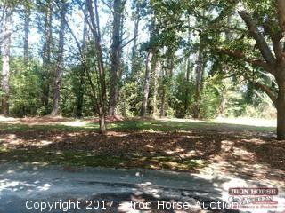 Vacant Lot on Live Oak Circle in Chadbourn, NC
