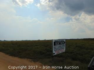 108.30+/- Acres on Bigfoot Road in Marlboro County, SC
